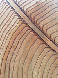 Individuelle Lösungen rund ums Holz